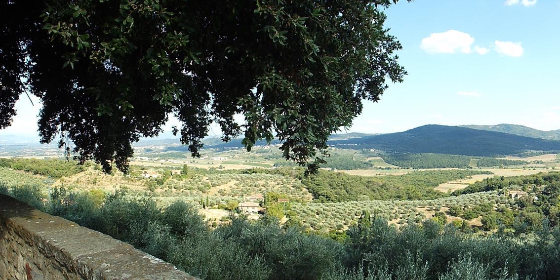 Veduta panoramica dell' agriturismo ad Arezzo - Castello di Montozzi